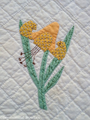 Dream Garden Tiger Lily block
