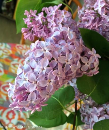 Lilacs May 31 2014